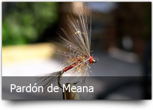 pardon_de_meana